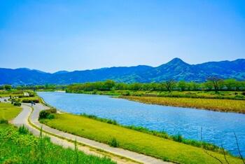 河川敷の写真