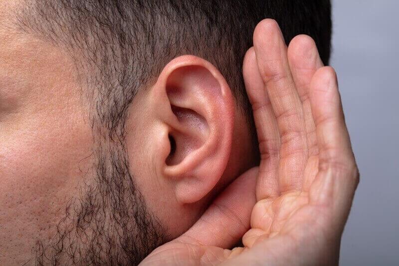 耳毛の処理方法